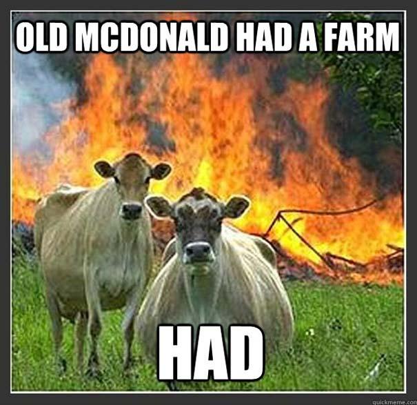 Τα κορυφαία «Memes» του 2012 (1)