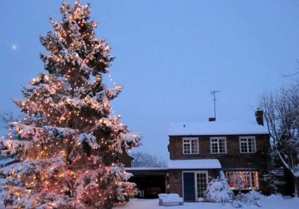 Το μικρό Χριστουγεννιάτικο δέντρο που «μάγεψε» όλη την περιοχή (7)