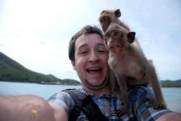 Οι πιο παράξενες & αστείες φωτογραφίες ζώων του 2012 (1)
