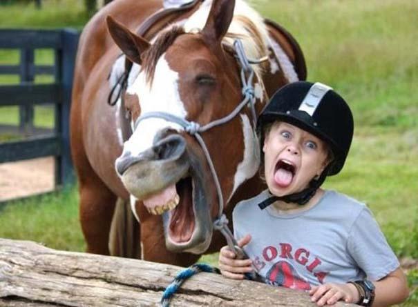 Οι πιο παράξενες & αστείες φωτογραφίες ζώων του 2012 (6)