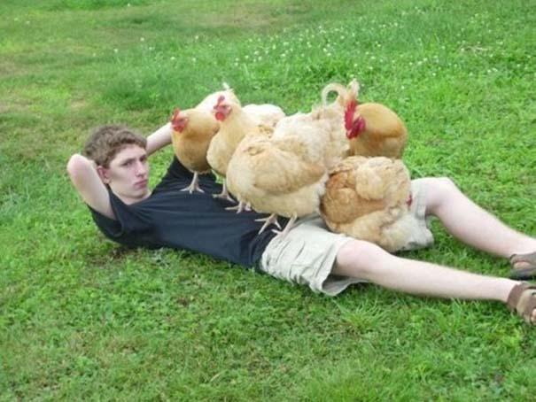Οι πιο παράξενες & αστείες φωτογραφίες ζώων του 2012 (8)