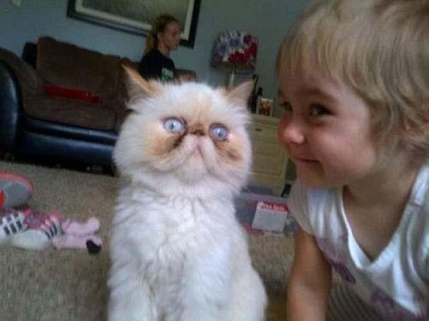 Οι πιο παράξενες & αστείες φωτογραφίες ζώων του 2012 (9)