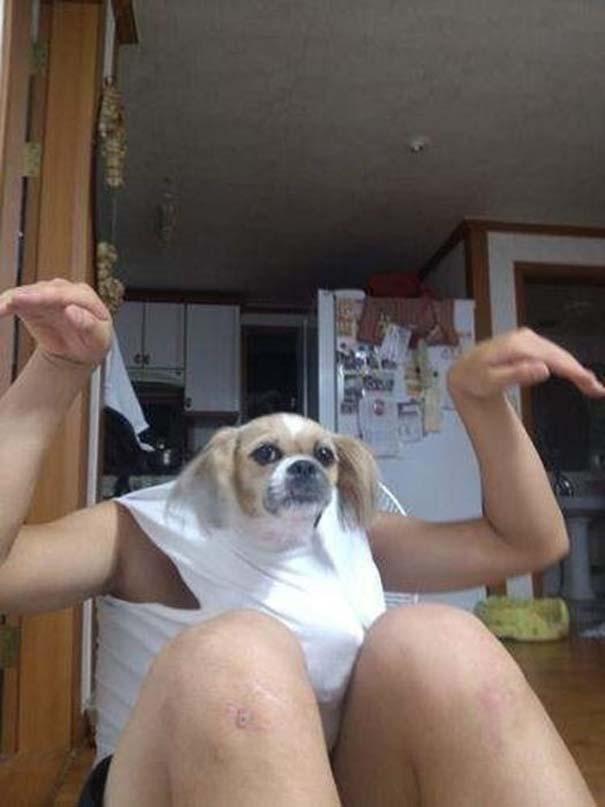 Οι πιο παράξενες & αστείες φωτογραφίες ζώων του 2012 (50)