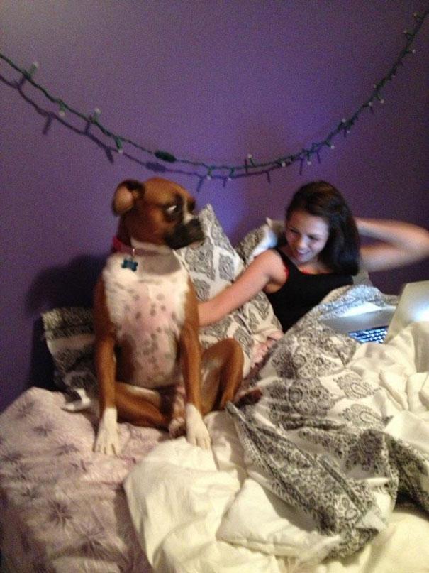 Πρώτη του φορά στο κρεβάτι με γυναίκα... | Φωτογραφία της ημέρας