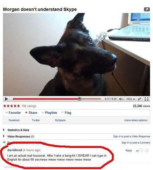 25 από τα πιο αστεία σχόλια του 2012 στο YouTube (11)