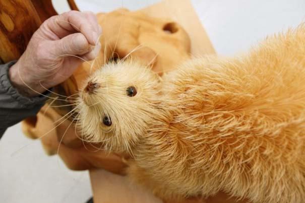Απίστευτα ρεαλιστικά γλυπτά ζώων από ξύσματα μολυβιού (4)