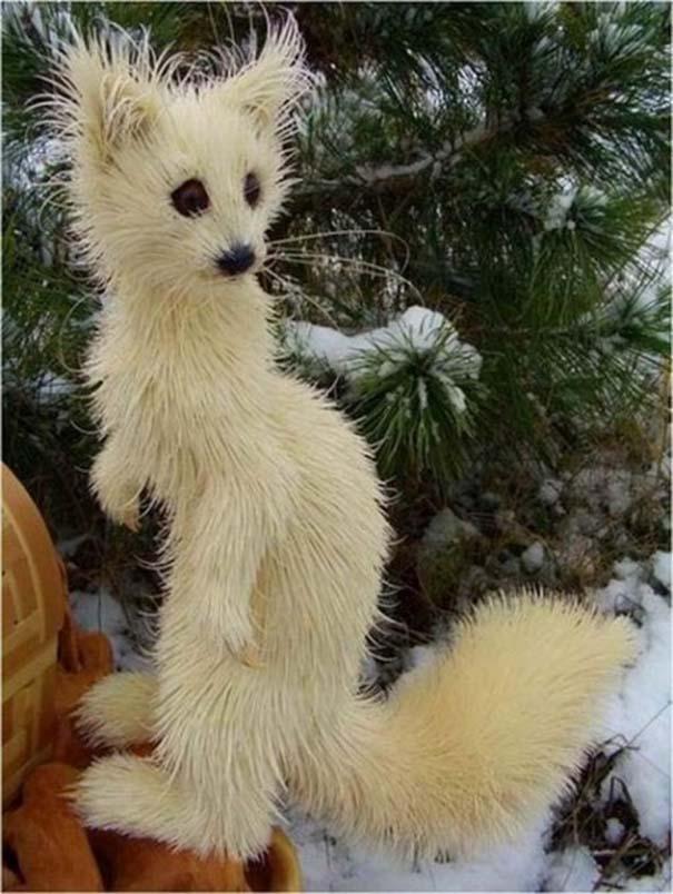 Απίστευτα ρεαλιστικά γλυπτά ζώων από ξύσματα μολυβιού (12)