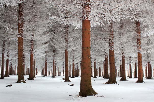 Χειμωνιάτικα τοπία σε εκπληκτικές φωτογραφίες (9)