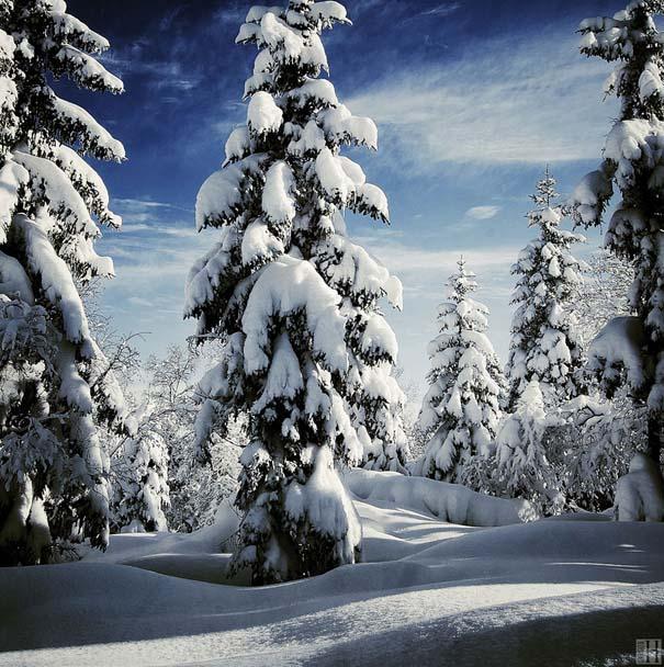 Χειμωνιάτικα τοπία σε εκπληκτικές φωτογραφίες (13)