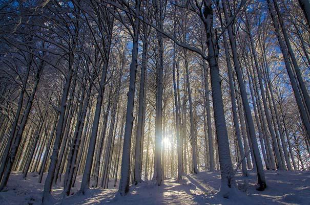 Χειμωνιάτικα τοπία σε εκπληκτικές φωτογραφίες (16)