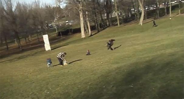 Χρυσαετός άρπαξε παιδάκι που έπαιζε σε πάρκο