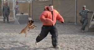 Στιγμή απόλυτου τρόμου κατά τη διάρκεια εκπαίδευσης σκύλου