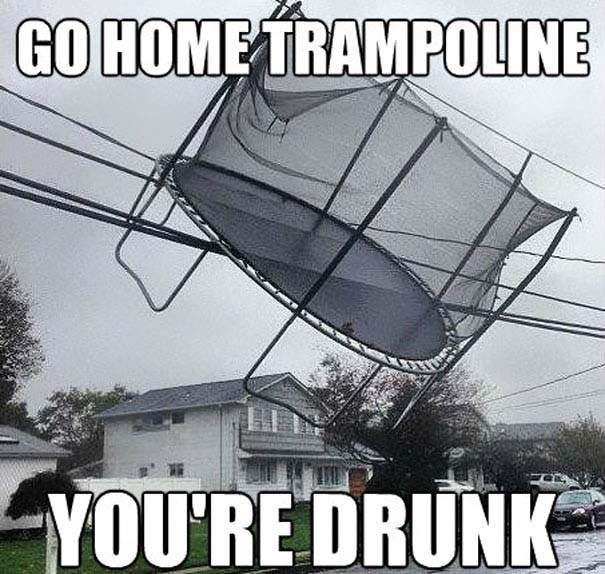 Go Home, You're Drunk (10)