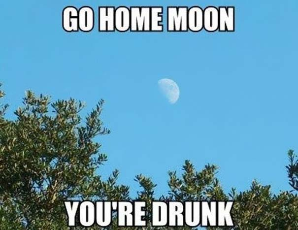 Go Home, You're Drunk (19)