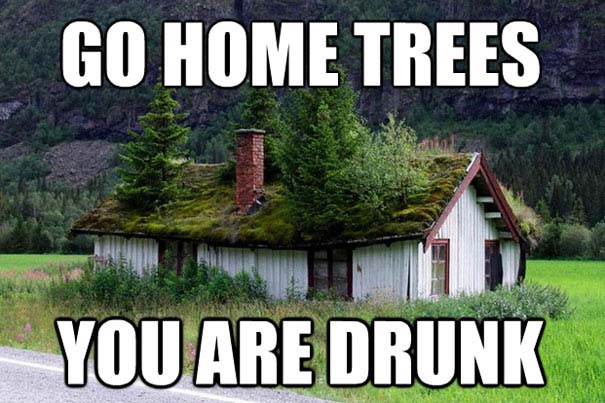 Go Home, You're Drunk (23)
