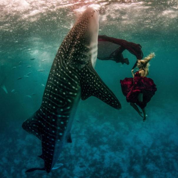 Το κορίτσι και ο φαλαινοκαρχαρίας | Φωτογραφία της ημέρας