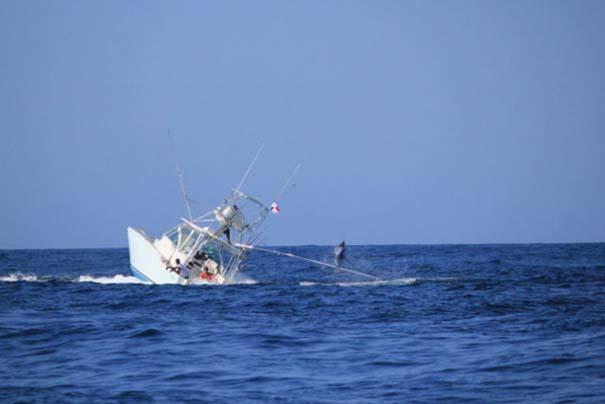 Ψάρι εναντίον σκάφους: Ποιο θα υπερισχύσει; (4)