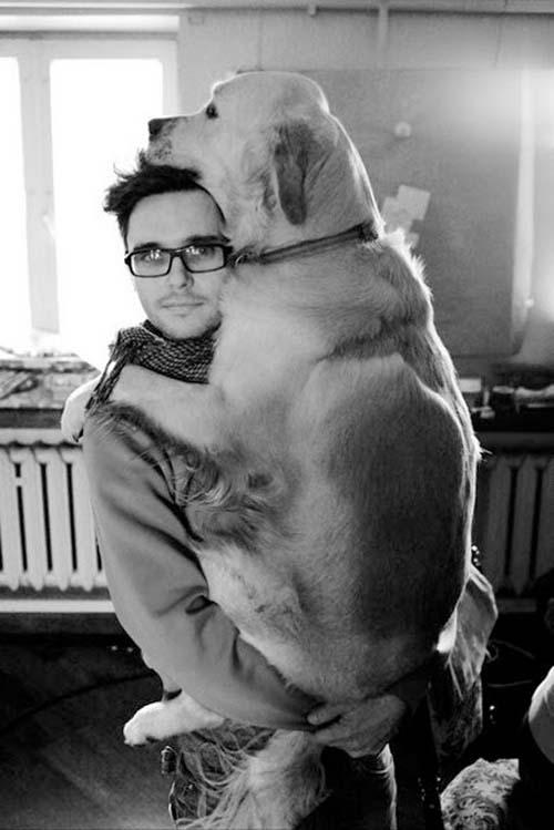Σκύλοι που δεν συνειδητοποιούν πόσο τεράστιοι είναι (14)