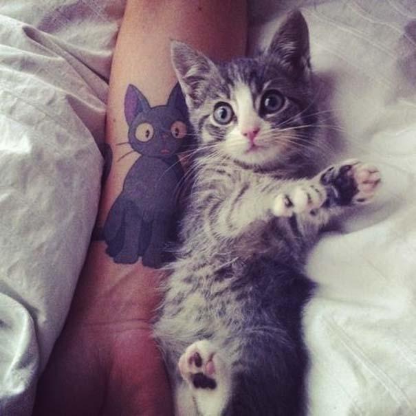 Τατουάζ με γάτες (28)