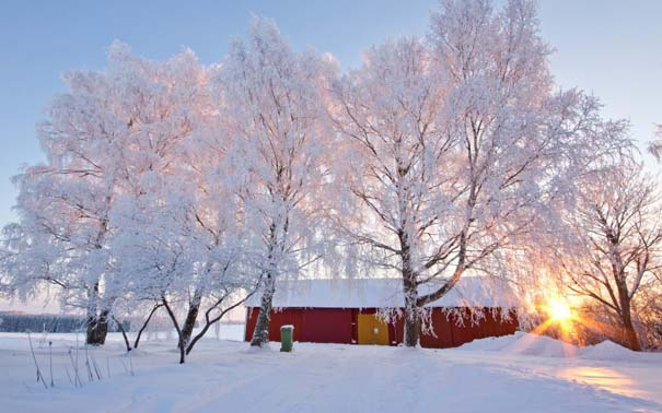 Ο Χειμώνας σε 35 υπέροχες φωτογραφίες (5)