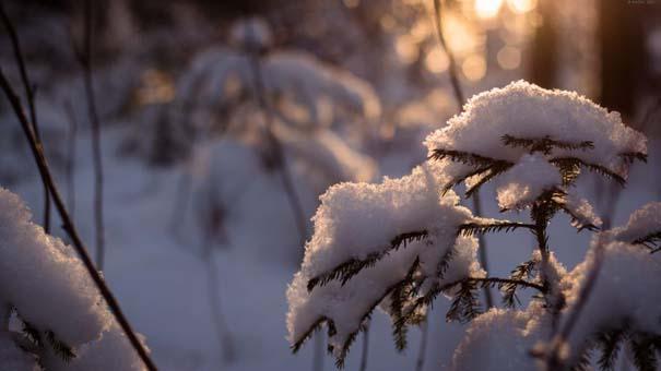 Ο Χειμώνας σε 35 υπέροχες φωτογραφίες (13)