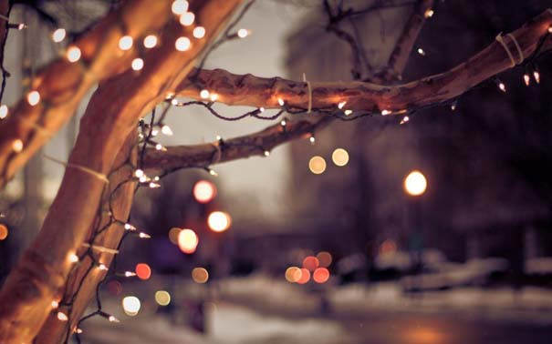 Ο Χειμώνας σε 35 υπέροχες φωτογραφίες (30)