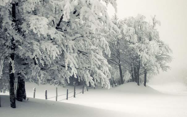 Ο Χειμώνας σε 35 υπέροχες φωτογραφίες (25)