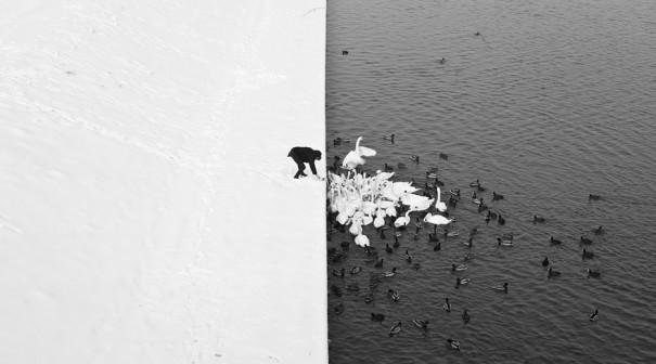 Yin και Yang | Φωτογραφία της ημέρας