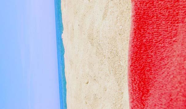 Σημαίες χωρών στη φύση (5)