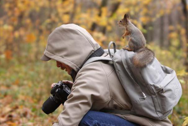 Φωτογραφίες ζώων τραβηγμένες την κατάλληλη στιγμή (2)