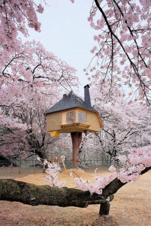 Μοναδικά και παράξενα σπίτια απ' όλο τον κόσμο (4)
