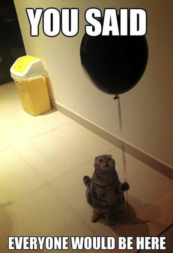 Πάρτι για... κλάματα (14)