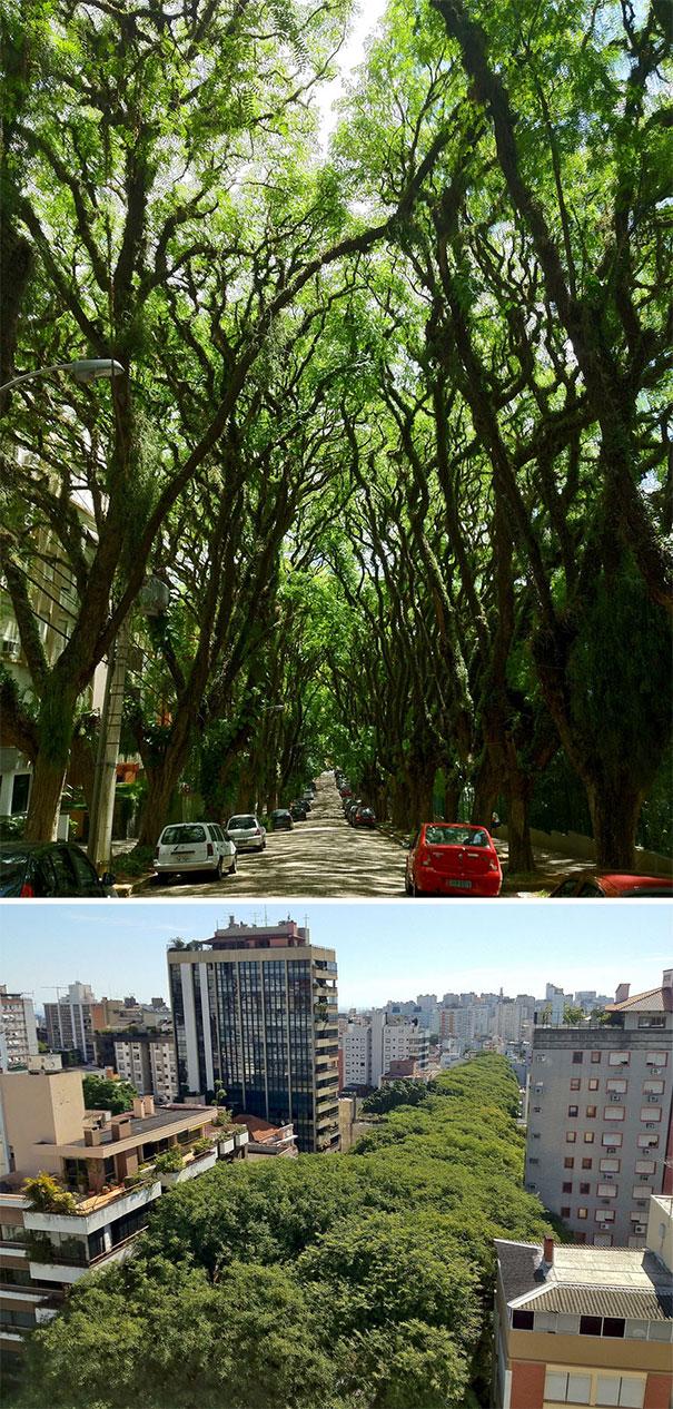 Ένας από τους ομορφότερους δρόμους στον κόσμο | Φωτογραφία της ημέρας