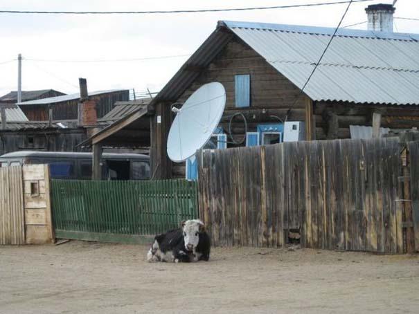 Εν τω μεταξύ στη Ρωσία... (4)