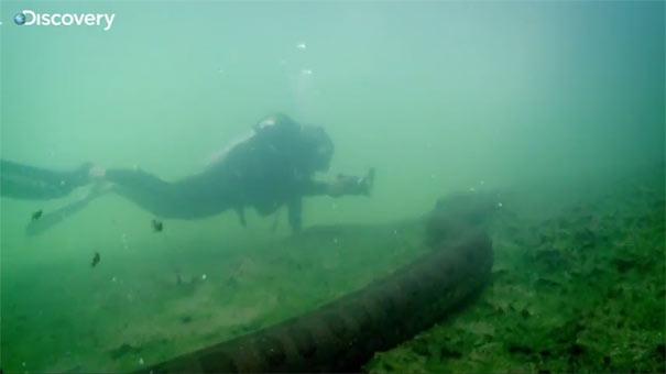 Κολυμπώντας με ένα Ανακόντα
