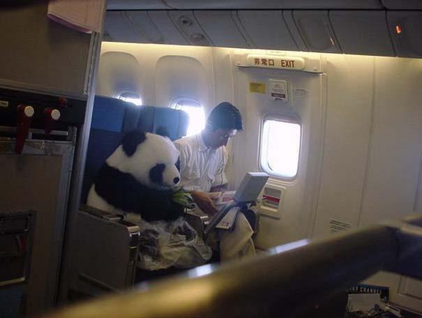 Αστεία & παράξενα περιστατικά στο αεροπλάνο (9)