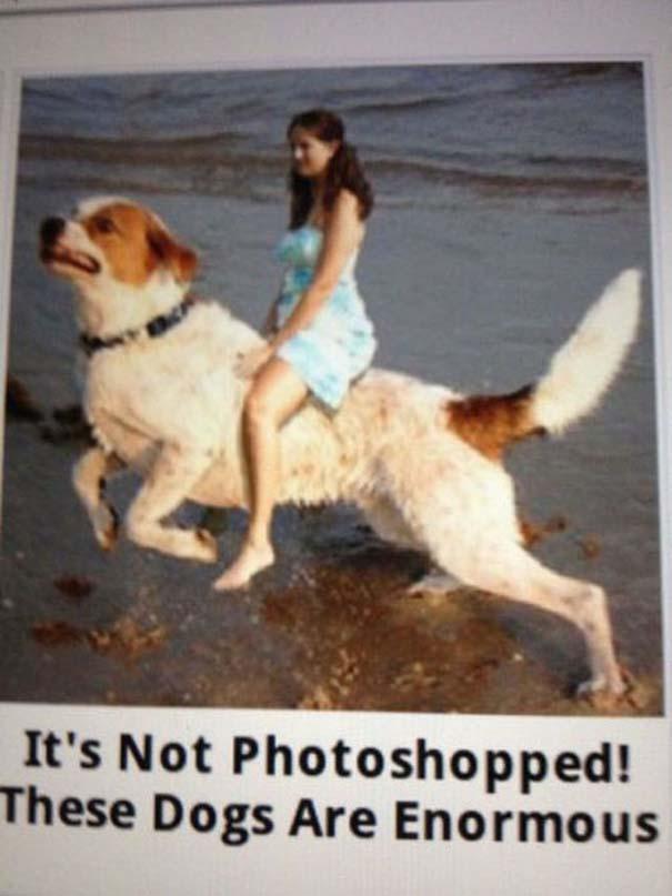 Απίστευτα λάθη στο Photoshop (13)