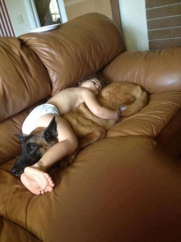 Σκύλοι που θα έκαναν τα πάντα για τα παιδιά (2)