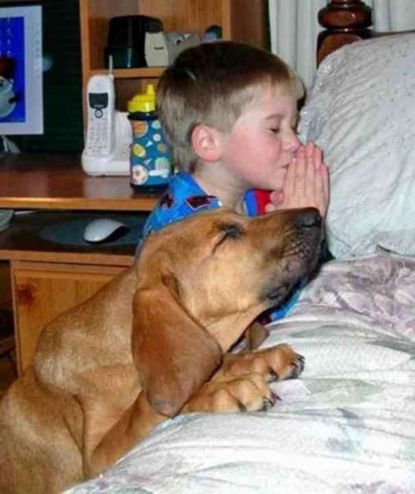 Σκύλοι που θα έκαναν τα πάντα για τα παιδιά (3)