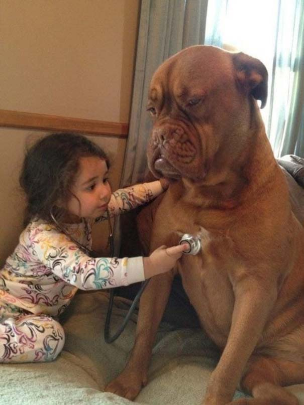 Σκύλοι που θα έκαναν τα πάντα για τα παιδιά (8)