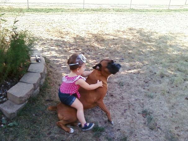 Σκύλοι που θα έκαναν τα πάντα για τα παιδιά (10)