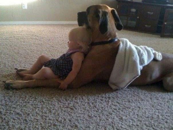 Σκύλοι που θα έκαναν τα πάντα για τα παιδιά (11)