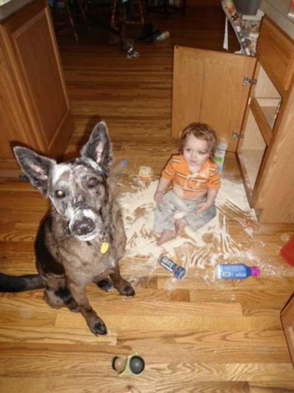 Σκύλοι που θα έκαναν τα πάντα για τα παιδιά (12)