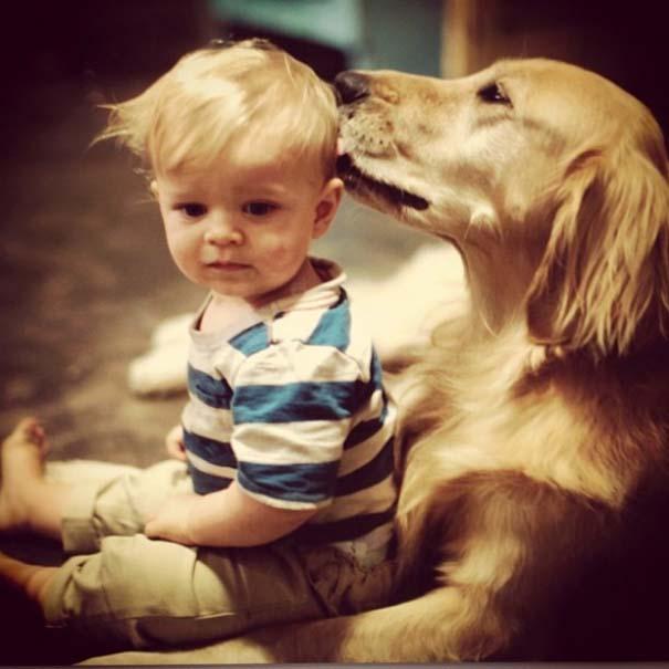 Σκύλοι που θα έκαναν τα πάντα για τα παιδιά (16)