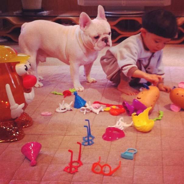 Σκύλοι που θα έκαναν τα πάντα για τα παιδιά (17)