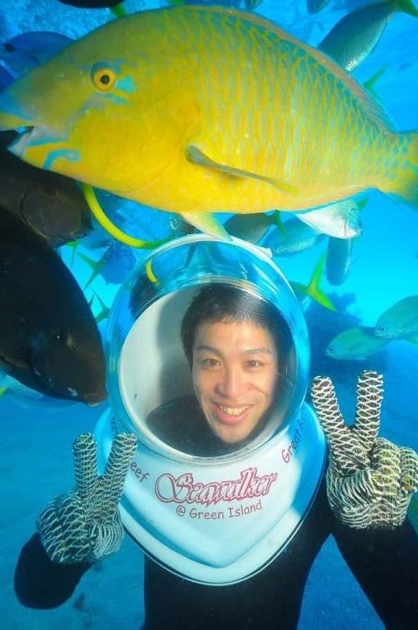 Ένα ψάρι που λατρεύει να ποζάρει (2)