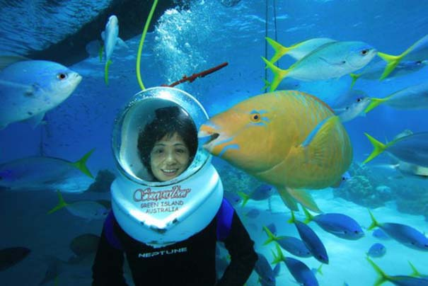 Ένα ψάρι που λατρεύει να ποζάρει (3)