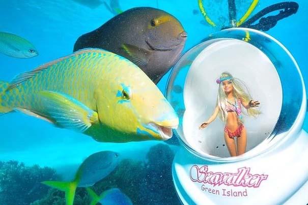 Ένα ψάρι που λατρεύει να ποζάρει (4)