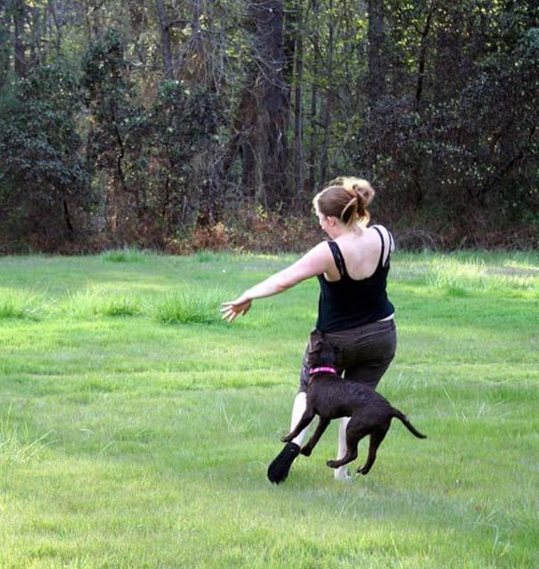 Γυναίκες και ζώα: Μια σχέση συχνά... επεισοδιακή! (7)