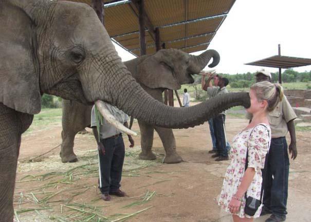 Γυναίκες και ζώα: Μια σχέση συχνά... επεισοδιακή! (21)